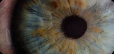 guide eye health