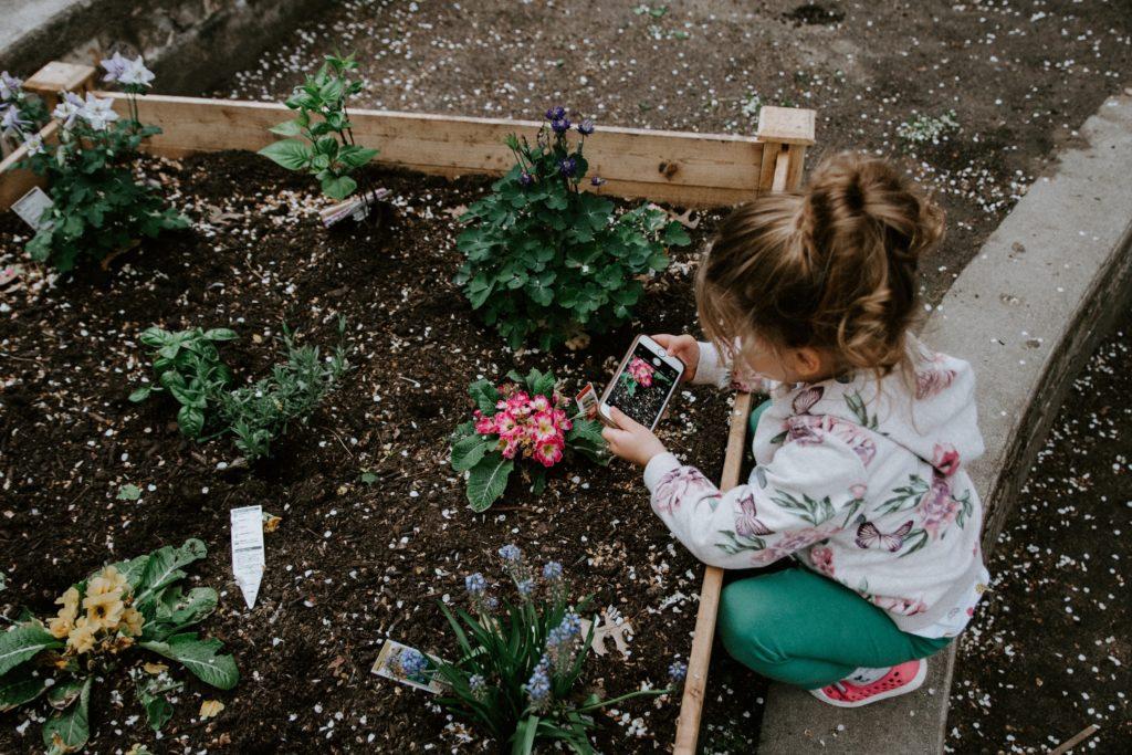 Outdoor activity for children