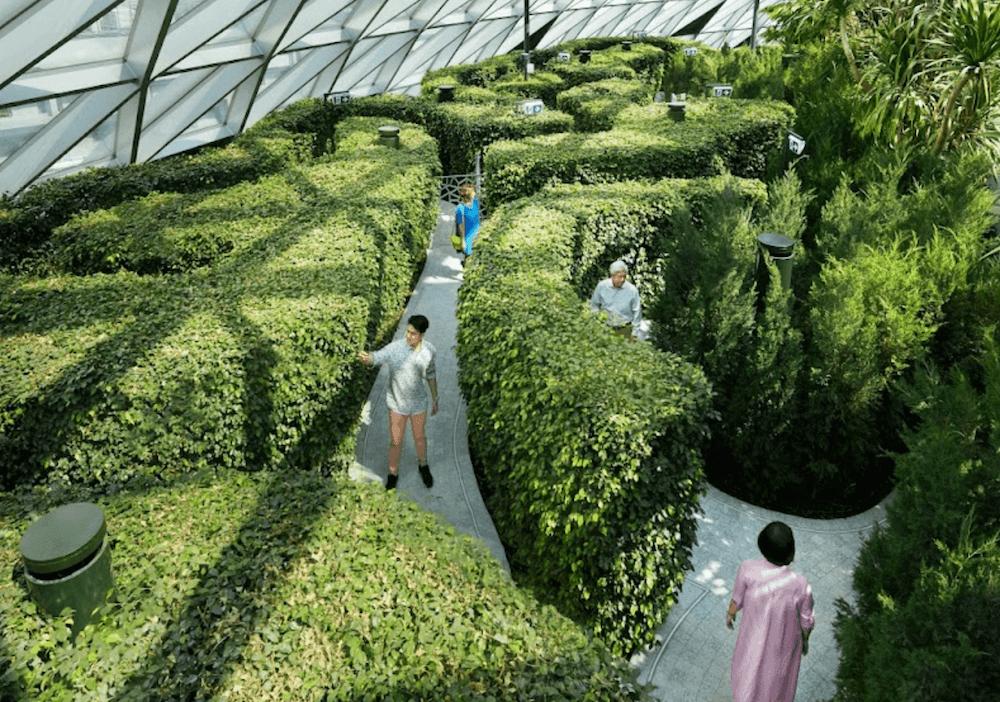 jewel hedge maze